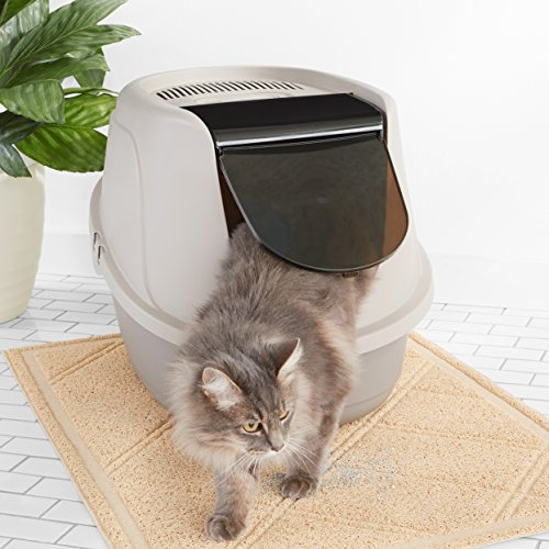 Best Cat Litter Box Reviews 2019